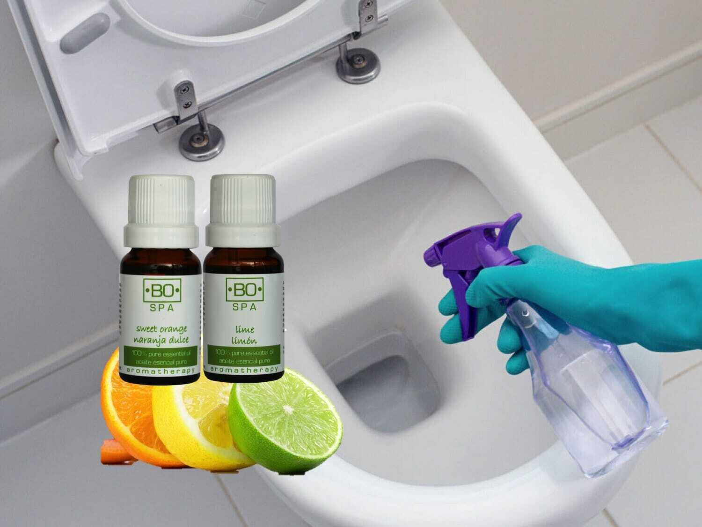 Elimina el olor antes de ir al ba o con aceites esenciales - Olor en el bano ...